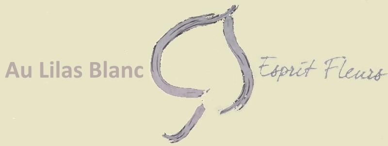 www.aulilasblanc.com